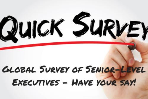 The 2019 Global Survey of Senior-Level Executives